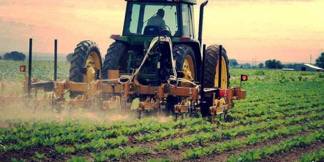 ضرورت برنامه ریزی برای برند سازی محصولات کشاورزی