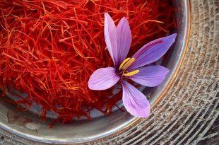 توسعه بازار زعفران و برندسازی این محصول از اولویتهای شورای ملی زعفران