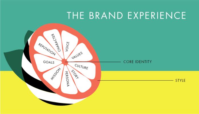 تجربه برند چیست؟