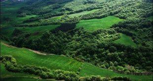 جشن ثبت جنگلهای هیرکانی در رشت