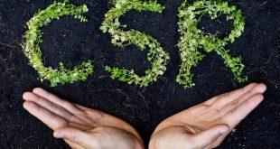 مسئولیت اجتماعی برند CSR