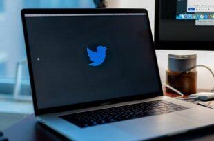 رقابت دو برند مایکروسافت و توئیتر برای خرید تیک تاک