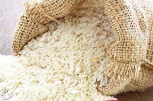 تاثیر نداشتن برند مشخص در برنج استان مازنداران
