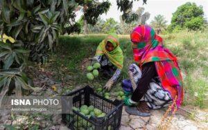 روستاها برندهای خود را با برند گردشگری ایران «سیمرغ» تعریف کنند
