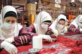 تلاش تجار افغانستانی در برند سازی زعفران به نام خود