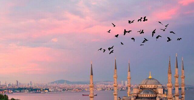 خودروسازی فیات ایتالیا پرفروش ترین برند خودروهای سواری در ترکیه در سال ۲۰۲۰