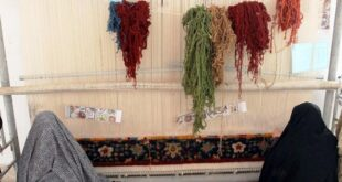 برند فرش قزوین با مرکز حامی تجارت و کارآفرینی تقویت می شود