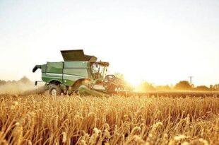 تبدیل کرمانشاه به یکی از قطبهای اصلی برندهای کشاورزی