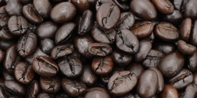 همه چیز در مورد قهوه