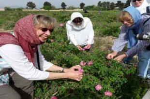 اردبیل به عنوان برند گردشگری کشاورزی کشور