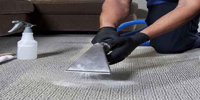 بهترین قالیشویی ها چه ویژگی هایی دارند؟