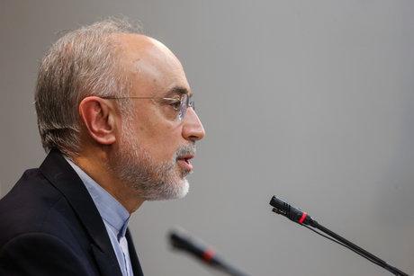 صالحی: ظریف یک برند بینالمللی برای ایران است